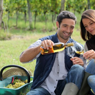 Go to a Cider and Wine Tasting for a Fun Fall Date Idea